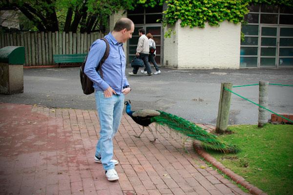 Zoológico de Buenos Aires - Fui e Vou Voltar - Alessandro Paiva