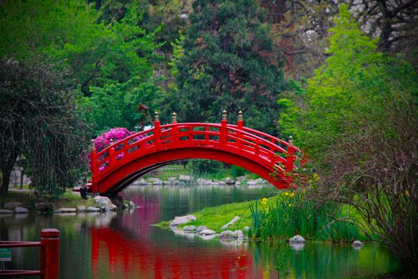 Ponte no Jardim Japonês - Buenos Aires - Fui e Vou Voltar - Alessandro Paiva
