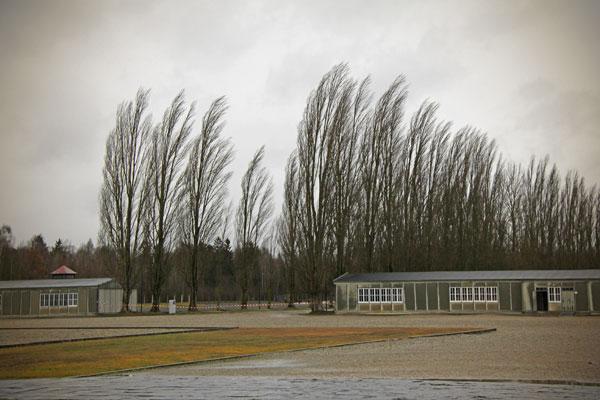 Estrada do campo ladeada por árvores - München - Fui e Vou Voltar - Alessandro Paiva