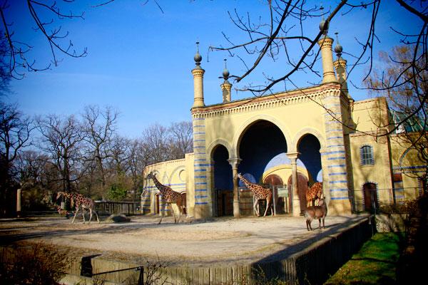 Girafas - Berlin - Fui e Vou Voltar - Alessandro Paiva