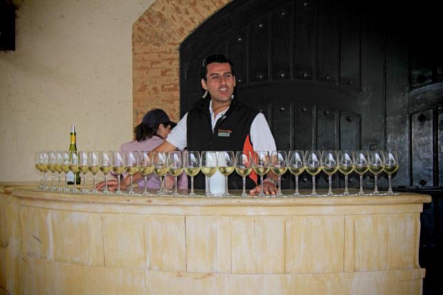 Degustação de vinho, na Concha y Toro