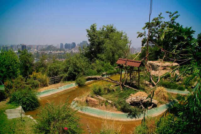 Jaula do zoológico de Santiago, acima do nível da cidade