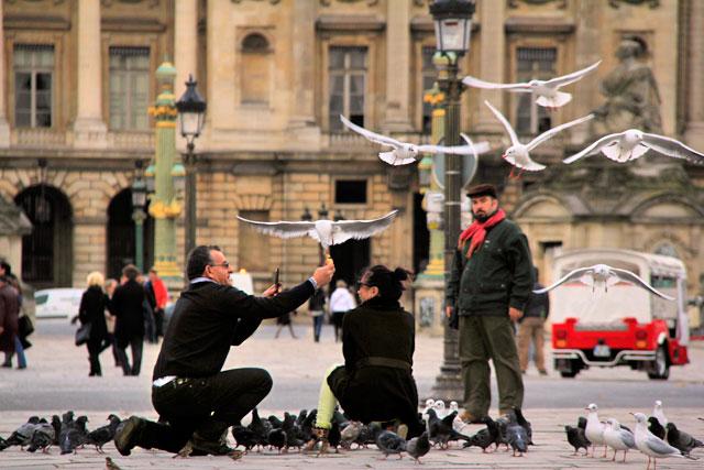 Turistas brincam com os pombos e gaivotas, na Place de la Concorde