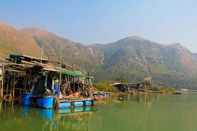 Passeio de barco em Tai O