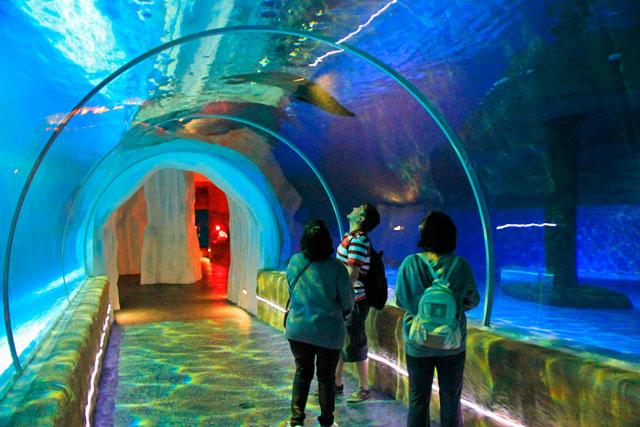 Grand Aquarium, no The Waterfront