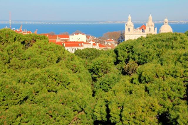 Rio Tejo Visto do Castelo de São Jorge
