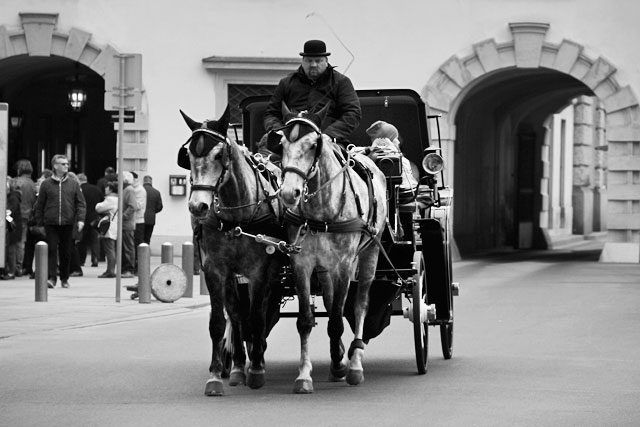Fiaker passando diante do Hofburg