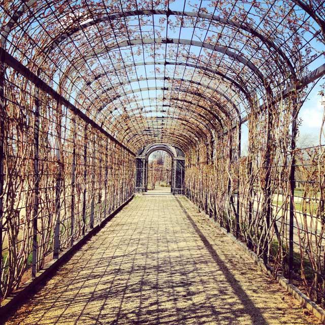 Passagem no Kammer-garten (Jardim da Câmara), no Schloss Schönbrunn (via Instagram)