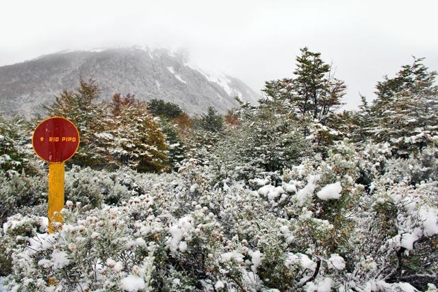 Senda Pampa Alta, no Parque Nacional Tierra del Fuego
