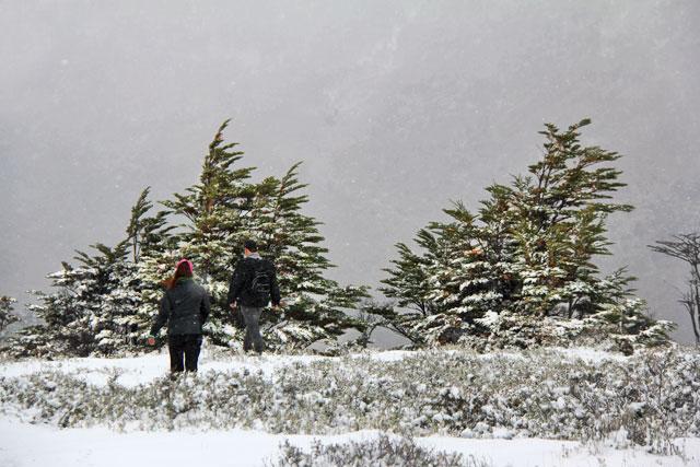 Mirante da Senda Pampa Alta, no Parque Nacional Tierra del Fuego