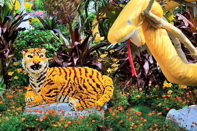 Decoração de jardim do Flower Dome, em Gardens by the Bay