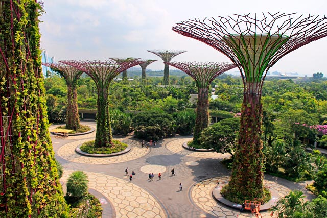 Supertree Grove (Bosque da Superárvore), em Gardens by the Bay