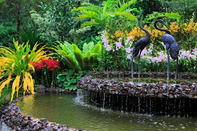 National Orchid Garden (Jardim Nacional das Orquídeas)