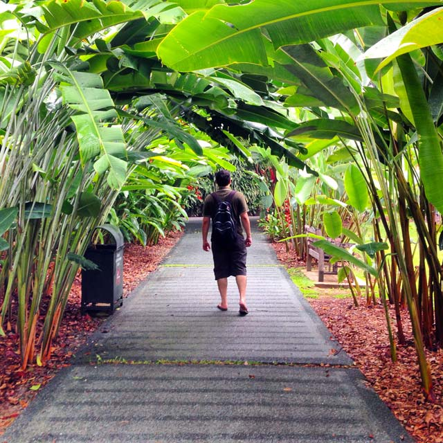 Botanic Gardens (via Instagram)