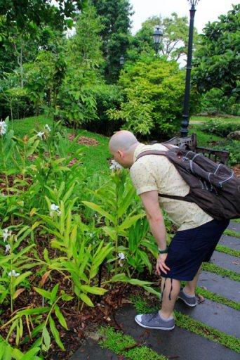 Fragrant Garden, no Botanic Gardens