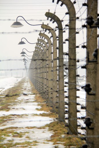 Cerca elétrica, em Auschwitz II