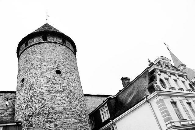 Torre Hellemanni